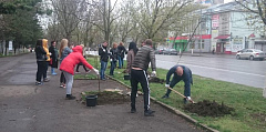 812 Tons of Waste Collected in Rostov during Regional Volunteer Clean-up